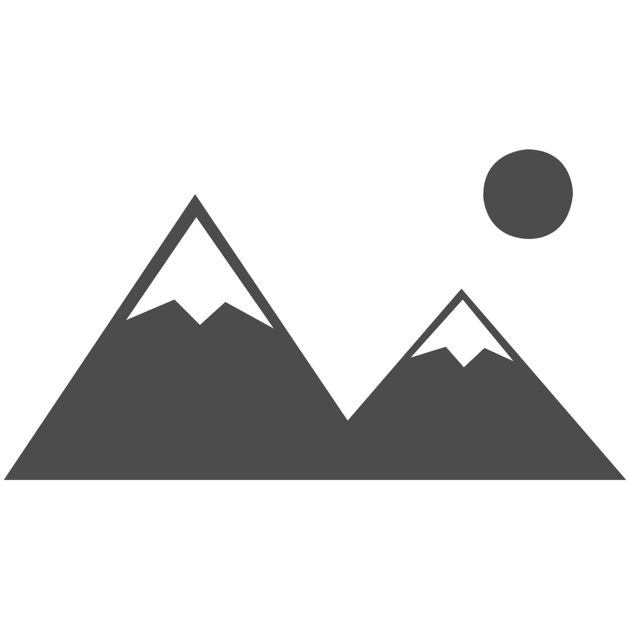 Pneumatic Shop Press HSP-75A